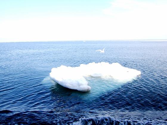 2007_0306北海道0170