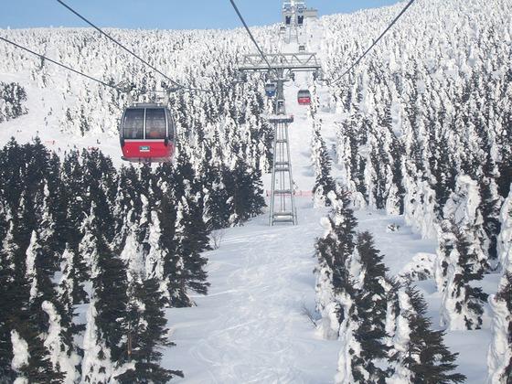 2007_0306北海道0021