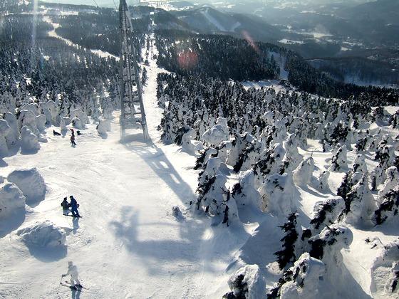 2007_0306北海道0044