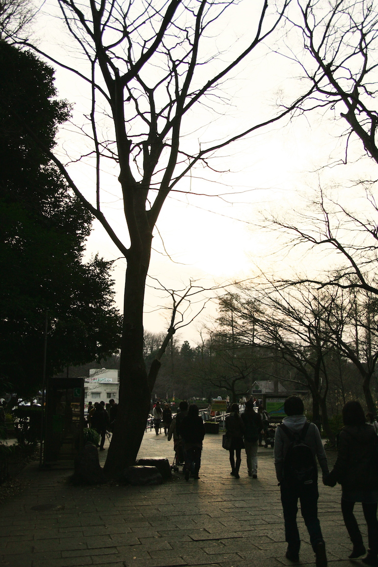 20100131155054.jpg